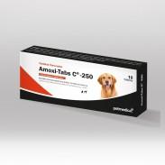 AMOXI-TABS C-250 X 10 TAB