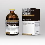 Vitamino® B