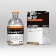 AMOXIGENTIN X 250 ML